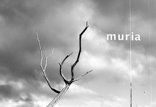 Muria-(Spain)-by-Ismael-Aveleira-Escapa,