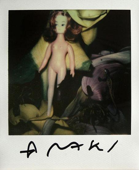 Nobuyoshi Araki Still life Polaroid Photography Signed Buy art online Gallery Affordable art Europe Belgium Japanese