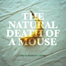 The Natural Death of a Mouse (Germany) by Katharina Huber