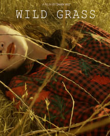 Wild Grass (Taiwan) by Shan Wu