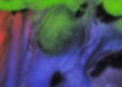 On Color.jpg