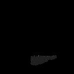 Venice Film Week Logo