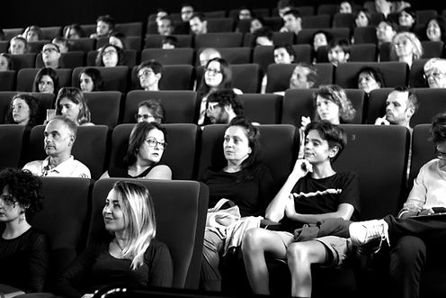 Press Accreditations - Verona International Film Festival