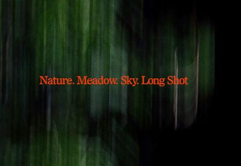 NatureMeadowSkyLongShot.jpg