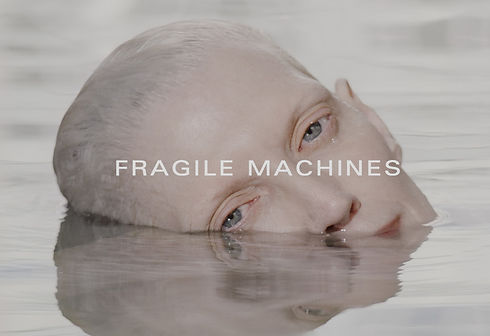 Fragile Machines (United States) by Derek Johnson, Luke Smithers