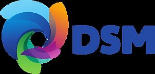 DSM-1.png