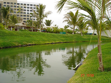 Canal Stabilization