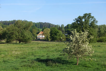 Sommertag im Nationalpark Ferienwohnung Uckermark Wasser See Brandenburg Mecklenburg Odertal Oderbruch Ferien Urlaub