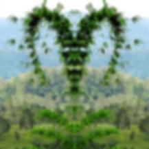 herzbild_edited_edited.jpg