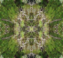 Mandala of the Highlands