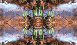 Erd-Wasser Mandala
