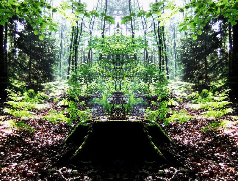 Altar des Waldes
