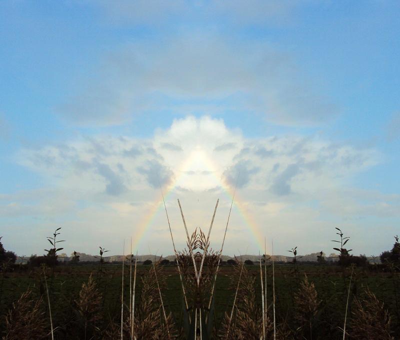 Wolkenwesen
