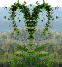 Grünes Herz der Erde
