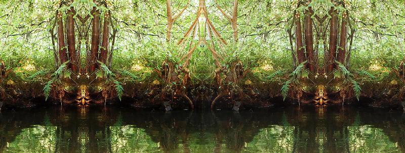 Wesen des Flusses