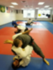 Gracie Bay View, BJJ in Toledo, Ohio, Team Pedro Sauer