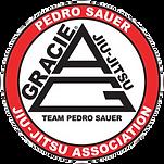 Team Pedro Sauer Logo