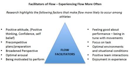 flow facilitator gs