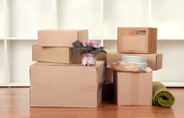 Removals Preston