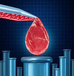 Is Lab-grown Meat a Vegan Friend or Foe?