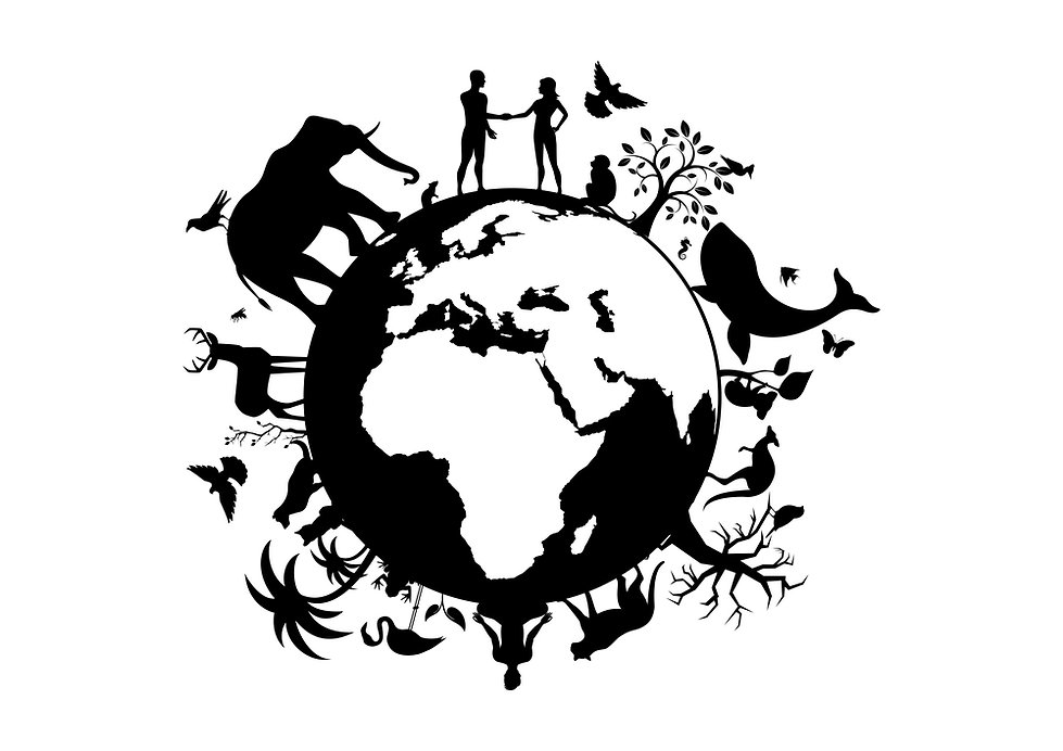 Human, Animal & Environmental Rights: Why they are Intrinsically Linked