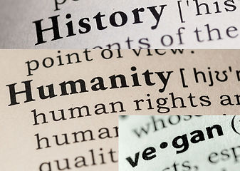 The History of Animal Rights is a History of Human Rights