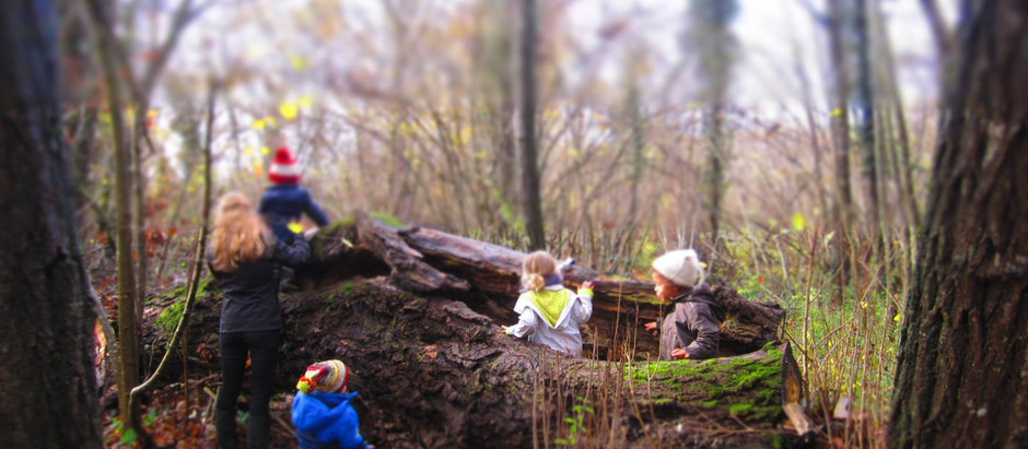 Forest School Teatcher ! Yes !
