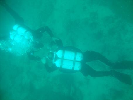 A importância do sistema de duplas no mergulho