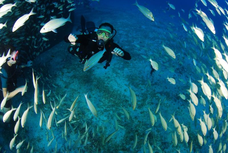 mergulho-recife6