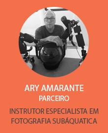 ary_amarante.png