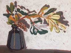 Serpentine Banksia
