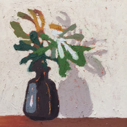 Banksia Shadow