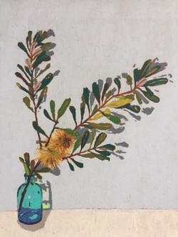 Reserve Banksia II