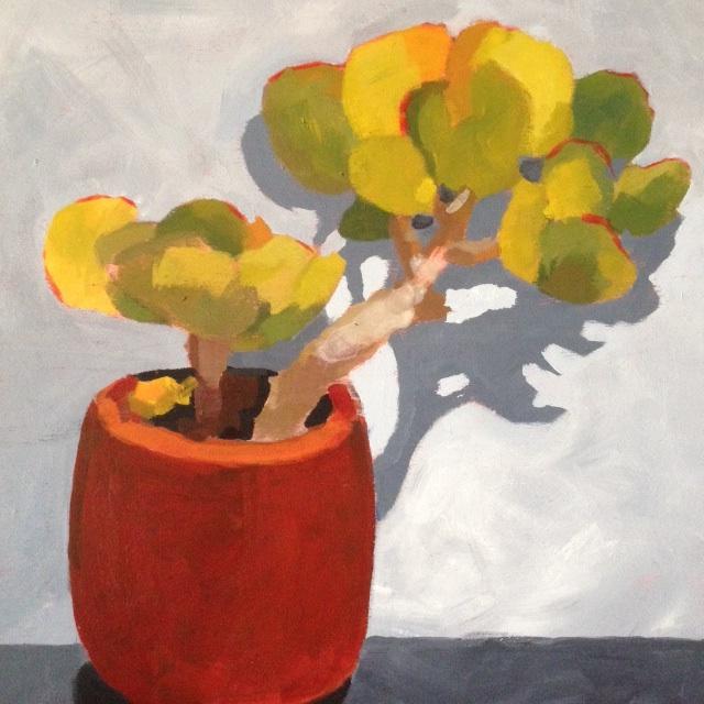 Hobart Succulent