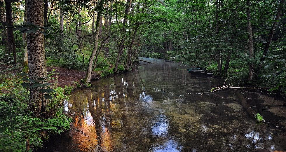 river-2637194_1920.jpg