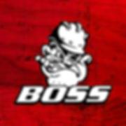 BossRedBkgndSqr.jpg