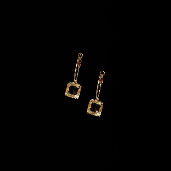 ALANI Swarovski Crystal Hoop Earrings