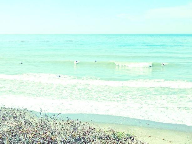 מועדון גלישה שדות ים