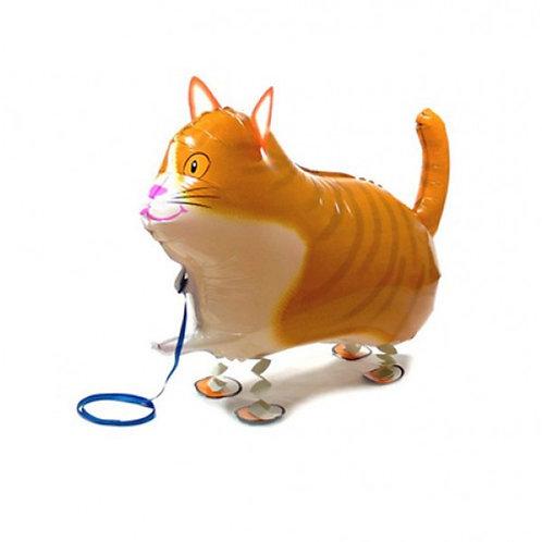 Animal Pet Balloon Cat