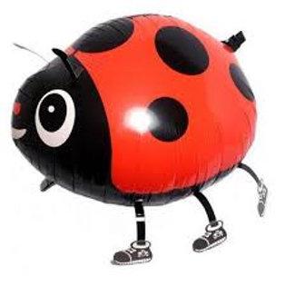 Animal Pet Balloon Ladybug