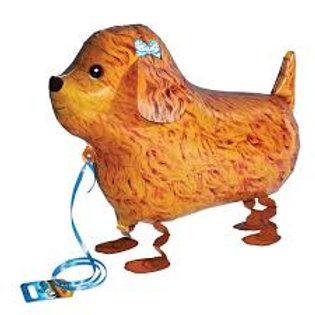 Animal Pet Balloon Brown Dog