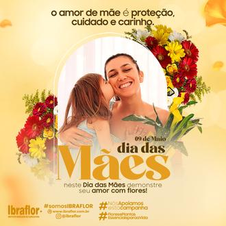 MÃES_FEED_07.png