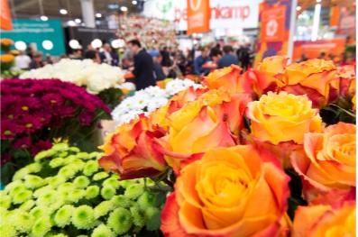 IPM 2019 – O grande Evento internacionaldo setor ornamental