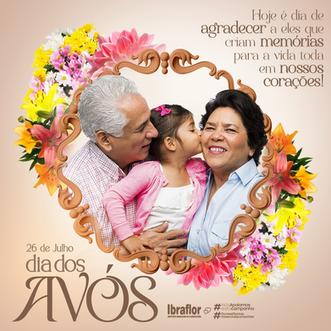 DIADOSAVÓS__FEED__03.png
