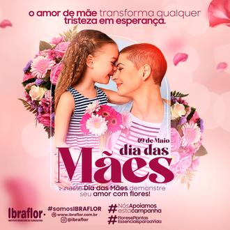 MÃES_FEED_01.png