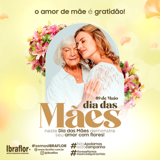 MÃES_FEED_10.png