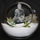 Thumbnail: Terra do BUDDHA