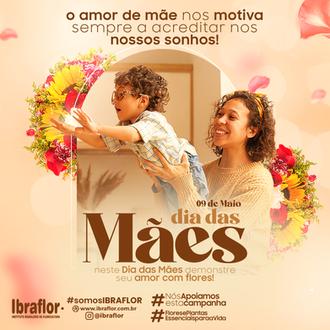 MÃES_FEED_04.png