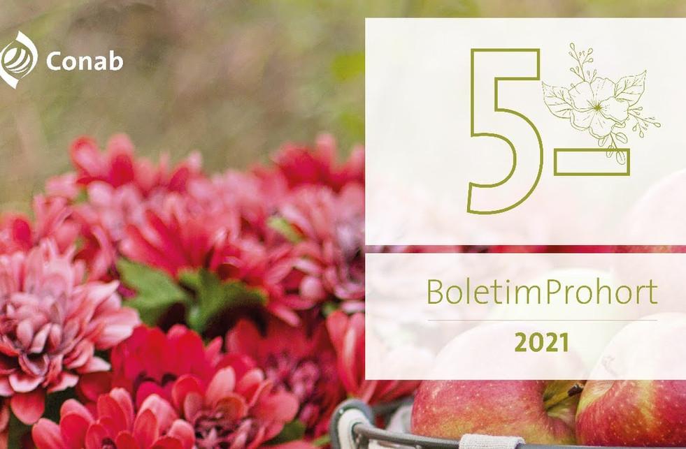 Conab apresenta cenário de mercado de hortifrutis e de flores ornamentais