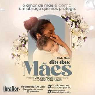 MÃES_FEED_06.png